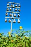 Kürbisbirdhouses und -sonnenblumen Stockfotografie