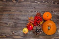 Kürbise, Äpfel, Beeren und Blätter auf hölzernem Hintergrund Lizenzfreies Stockbild
