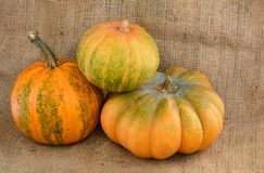 Kürbise auf dem Leinwandtonen Autumn Harvest Stockfoto