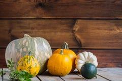 Kürbise auf hölzernem Hintergrund, Kopienraum für Text Halloween-, Danksagungstag oder saisonalherbstliches horizontal stockfoto