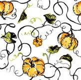 Kürbise, Blätter und Reben auf weißem Hintergrund Nahtloses Muster des handgemalten Aquarells Lizenzfreie Stockfotografie