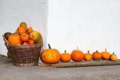 Kürbise in einem Weidenkorb und in einer Reihe Draußen Bild in der Herbstsaison Lizenzfreies Stockfoto