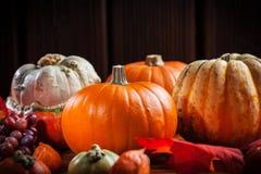 Kürbise für Danksagung und Halloween Lizenzfreie Stockfotos