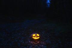 Kürbise für Halloween lizenzfreie stockfotos