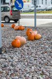 Kürbise für Halloween an den Kreuzungen in Gdansk nahe Galeria Baltycka Lizenzfreies Stockfoto