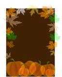 Kürbise mit Herbstblättern Stockfoto