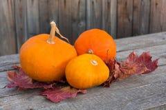 Kürbise mit Herbstlaub auf hölzernem Brett Stockbilder