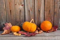 Kürbise mit Herbstlaub auf Holztisch nahe hölzerner Wand Stockfotografie