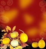 Kürbise mit trockenen Blättern für Halloween-Dekoration Stockfoto