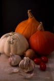 Kürbise mit Zwiebel, Knoblauch und Tomaten Stockfoto