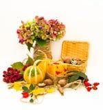 Kürbise, Nüsse und Blumen. Stockbilder