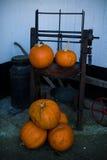 Kürbise und Bauernhof-Werkzeuge lizenzfreies stockbild
