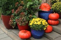 Kürbise und Blumenzusammensetzung Lizenzfreie Stockbilder