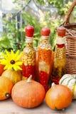Kürbise und buntes in Essig eingelegtes Gemüse, wenn Glas konserviert wird Lizenzfreies Stockfoto