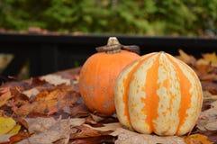 Kürbise und Herbstblätter in Kanada Stockfotos