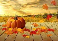 Kürbise und Herbstlaub auf Holztisch auf einem Hintergrund des Feldes Stockfotos