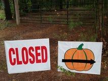 Kürbisflecken geschlossen während der Jahreszeit Stockfotografie