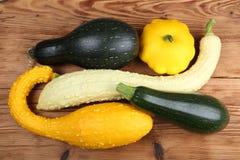 Kürbisse und Zucchini Lizenzfreies Stockbild