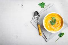 Kürbissuppe mit Petersilienhintergrund Lizenzfreies Stockfoto