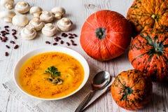 Kürbissuppe mit Samen und Petersilie Lebensmittel des strengen Vegetariers lizenzfreie stockbilder