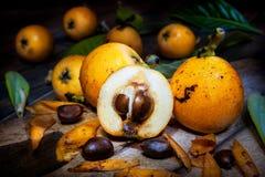 Kürzlich geerntete frische Loquats auf hölzernem Hintergrund stockfotografie