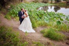 Küssen der Braut und des Bräutigams nahe lotos Teich Stockfotografie