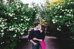 Küssen der Paare im Park stockbild