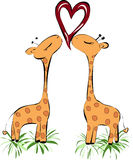 Küssen des Giraffenherzens Lizenzfreies Stockbild
