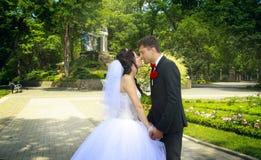 Küssen im Park Stockbilder