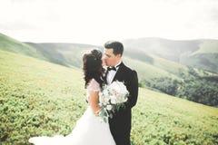 Küssen von den Hochzeitspaaren, die über schöner Landschaft bleiben stockbild
