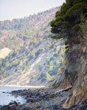 Küste 5 Stockbilder
