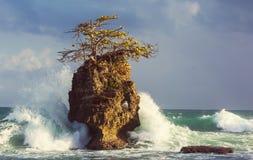 Küste in Costa Rica Lizenzfreie Stockfotos