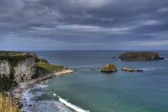 Küste der Schaf-Insel-, Antrim, Norther Irland Lizenzfreies Stockbild
