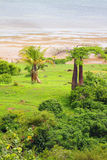 Küste des Golfs Andovobazaha Diego-Suarez (Antsiranana), Madagaskar Stockfoto