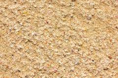 Küste, die Oberfläche des Sandes und Reste von Oberteilen lizenzfreie stockbilder