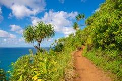 Küste Hawaiis Kauai Napali Kalalau-Spur Stockbilder