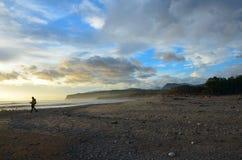 Küste, Nationalpark Fiordland stockbild