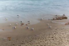 Küste, sandiger Strand, unscharfe Wellen Lizenzfreie Stockfotografie