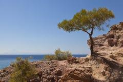 Küste, Thassos, Griechenland Stockfotografie