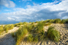 Küste u. Strand - Nordsee-niederländischer Hafen Zealande Lizenzfreie Stockfotografie