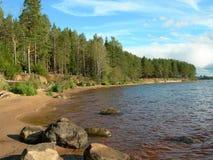 Küste von hölzernem See. Lizenzfreies Stockfoto