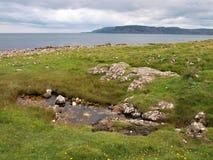 Küste von Irland Lizenzfreies Stockbild