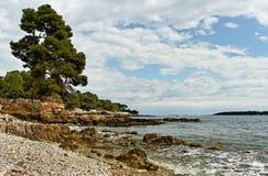 Küste von Sainte-Margurite. stockfoto