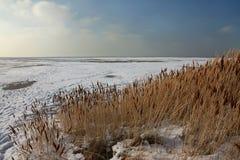 Küste von Salt Lake in Utah Lizenzfreie Stockfotografie
