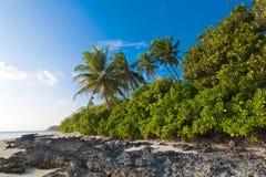 Küste von tropischer Insel Lizenzfreies Stockbild