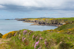 Küste Wales Lizenzfreie Stockbilder