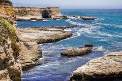 Küsten-Hafendichtungen des Pazifischen Ozeans, die auf Felsen, Wilder Ranch State Park, Kalifornien stillstehen lizenzfreie stockfotos