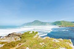 Küsten-Neuseeland lizenzfreie stockbilder