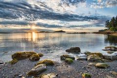 Küsten-Sun-Stern mit Rock Stockbilder