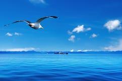 Küstenansicht Stockfoto